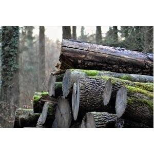 Poêle à bois Auvergne